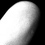 fingerprint characteristics